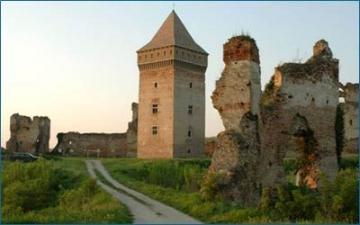 The fortress in Bač